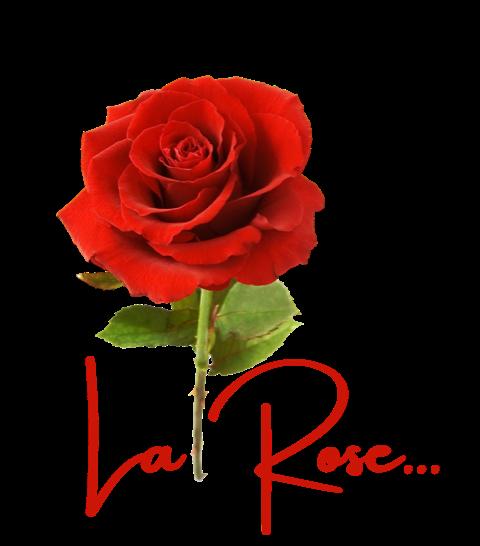 Glamping Dordogne / U bent exclusief te gast bij La Rose Logo
